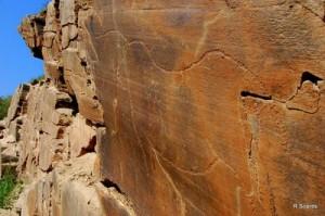 ribeira dos piscos 1 300x199 Núcleo de gravuras rupestres da Ribeira de Piscos Parque Arqueológico do Vale do Côa (Património Mundial da Humanidade) (Vila Nova de Foz Côa) (****)