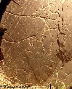 parque arqueologico de vila nova de foz coa1 243x300 Parque Arqueológico do Vale do Côa (Vila Nova de Foz Côa) (1ª Parte) (*****)