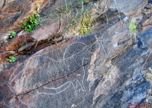 cavalo de mazouco 300x213 Cavalo Paleolítico de Mazouco (*) (Freixo de Espada a Cinta)