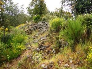 castro vale da aguia 300x225 Castro de Vale da Águia (Miranda do Douro) (*) Tempos de guerra no Planalto Mirandês?