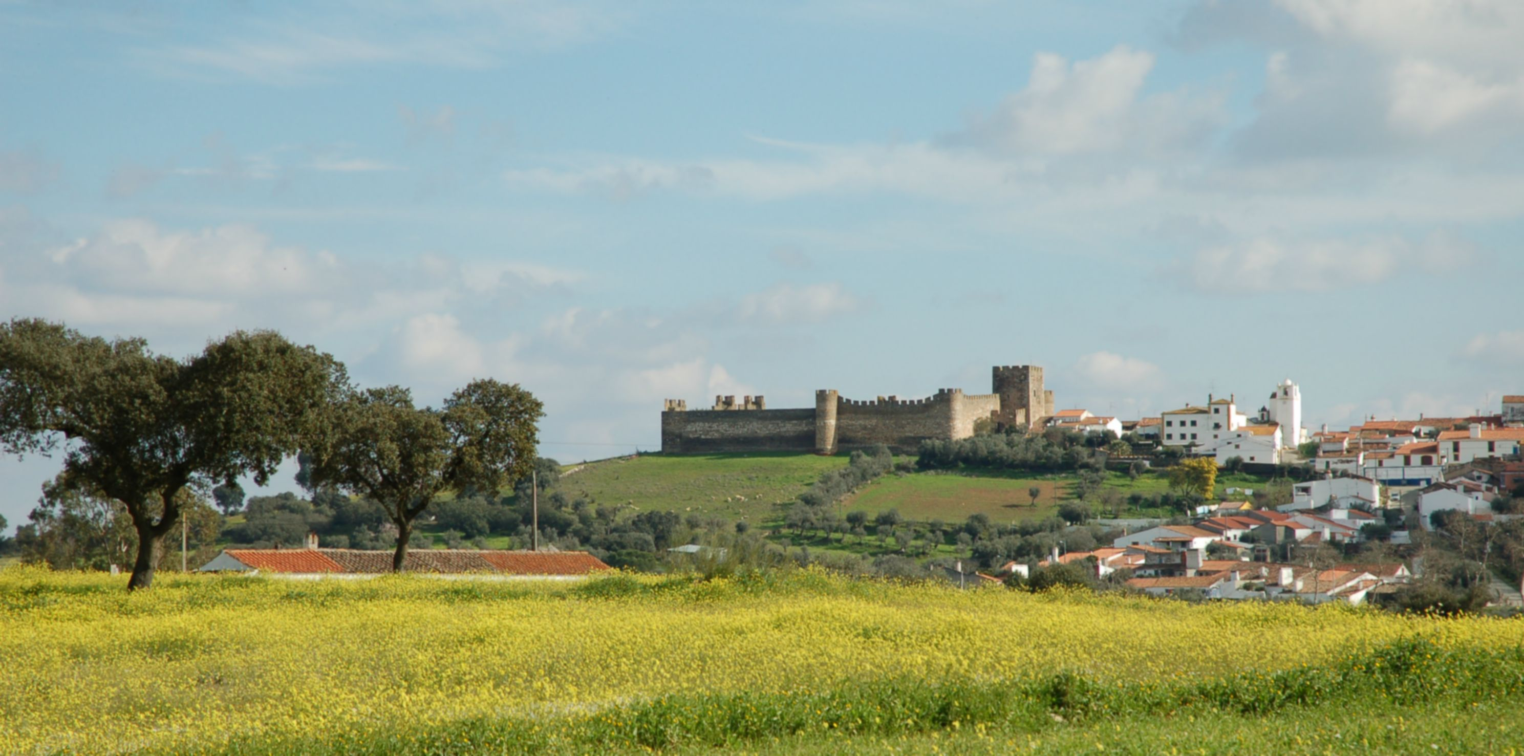 Château de Terena