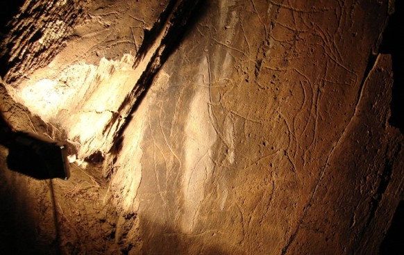 Valle de Coa Parque Arqueológico (*****)-Una nueva vida